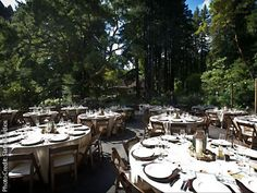Bell Hallow Weddings in the Woods Santa Cruz Mountains Reception Venues 95005   Here Comes The Guide
