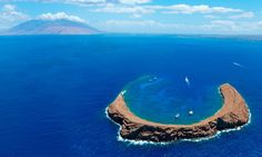Enjoy Maui's best snorkeling at Molokini Crater with the Pride of Maui, which also takes you to Turtle Town to see Green Sea Turtles Hawaii Honeymoon, Hawaii Vacation, Maui Hawaii, Vacation Spots, Vacation Ideas, Maui Beach, Honeymoon Ideas, Hawaii Destinations, Maui Travel