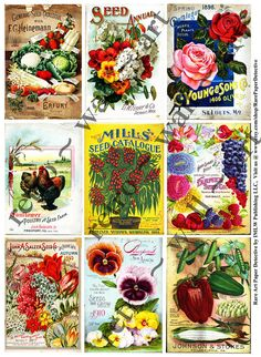 Vintage Seed Pack, Antique Seed Catalog, INSTANT DOWNLOAD, Old Garden Clip Art, Clip Art Ephemera, Digital Collage Set, Altered Art, 309a