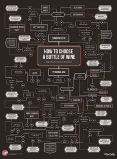 How to Choose a Bottle of Wine Flowchart Infographic