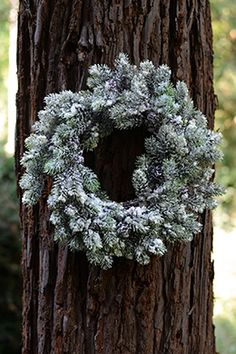 Artificial Pine Wreath Flocked 19in