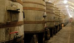 Before there were stainless tanks. In Vino Veritas, Wine Making, Wineries, Wine Cellar, The World's Greatest, Sicily, Wine Recipes, Concrete, Drinking
