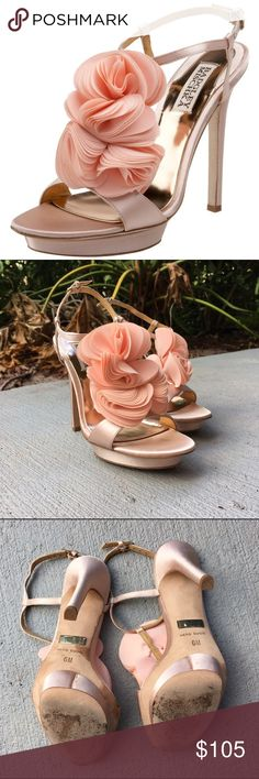 Bagley Mischka Randee T-Strap Sandal Wore once for my wedding, in excellent condition! Blush color. I have the original box as well as dust bag. Badgley Mischka Shoes Sandals