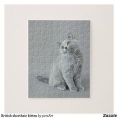 British shorthair kitten jigsaw puzzle British Blue Cat, British Shorthair Kittens, Make Your Own Puzzle, Custom Gift Boxes, Blue Cats, Cat Gifts, High Quality Images, Funny Cats, Your Design