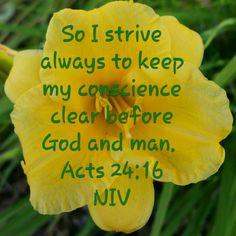 Acts 24:16 NIV