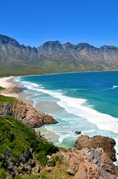 Rooi-Els on the eastern shore of False Bay -- Western Cape, South Africa.