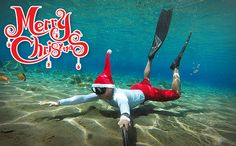 Merry Christmas in the water
