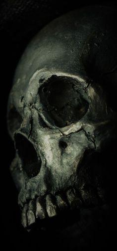 Skull Artwork, Skull Painting, Skull Wallpaper, Dark Wallpaper, Screen Wallpaper, Wallpaper Quotes, Skull Tattoo Design, Skull Tattoos, Arte Horror