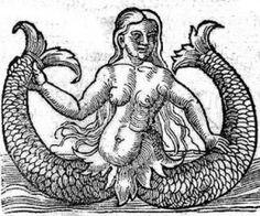 Naturalis Historia, 1565