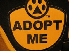 Dog Gear Adopt Me Products Vest Sweaters Love