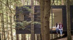 Image result for beaver brook cabin