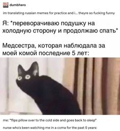 im translating russian memes for practice and i… theyre so fucking funny me: *flips pillow over to the cold side and goes back to sleep* nurse who's been watching me in a coma for the past 5 years: Funny Shit, Funny Posts, The Funny, Hilarious, Funny Stuff, Funny Things, Random Stuff, Memes Humor, Bts Memes