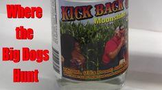 Kick Back Cove Clear