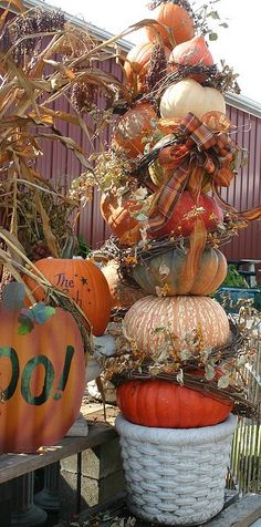 topiary pumpkins dressed with plaid fall ribbon and intertwined w/ grapevine & fall leaves