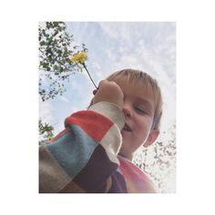 "78 curtidas, 3 comentários - Mafer Navas (@mafernavas) no Instagram: ""Beautiful boy... #boy #autumn #joy"""