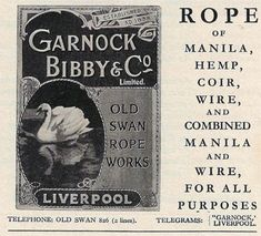 Liverpool Town, Liverpool History, Annoying Kids, New Brighton, Book Cover Art, Local History, Swan, How To Memorize Things, Factories