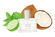 UO Guide: Summer Fragrances - Urban Outfitters - Blog