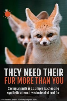 We don't need fur they do. #earth #animals #cause