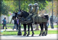 STRANGE RIOT SQUAD ARMOR FOR HORSES! - MOUNTED PATROL NOW HAS HORSE BODY ARMOR - FACE SHIELDS AND KNEE/SHIN PROTECTION!