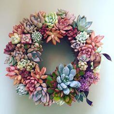 succulent wreath - diy home decor - live wreath ideas