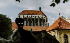 For unforgettable moments, Prague Franciscan Gardens, Metal Arch, Public Garden, Growing Herbs, Fruit Trees, Hedges, Prague, Playground, Gazebo