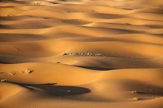 Camel caravan, #Morocco. Photo: Lalo Fuentes