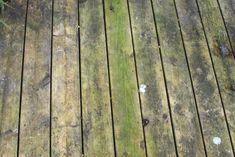 For at rengøre trædæk og fjerne grønne alger - Almbacken Garden Design Gardening For Beginners, Gardening Tips, Bokashi, Wooden Decks, Garden Structures, Outdoor Projects, Garden Planning, Garden Inspiration, Land Scape