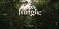 New Disney Interactive Site on Tumblr Highlights The Jungle Book