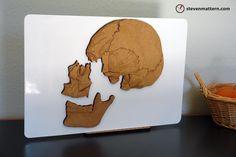 Magnetic Skull Puzzle - Medium Density Fiberboard