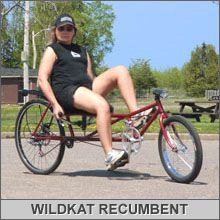 The WildKat Long Wheelbase Recumbent Bike is well behaved recumbent bike with under seat steering and a comfortable seat. Can be built in a few days for minimal cost. www.AtomicZombie.com