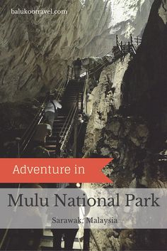 A UNESCO World Heritage site, Mulu National Park (Sarawak, Malaysia) is famous for its limestone caves. The world's largest natural chamber (Sarawak Chamber) is located in the park, though it's not accessible to public. Popular activities in the park includes visiting showcaves, adventure caving, canopy skywalk, waterfalls and hiking.