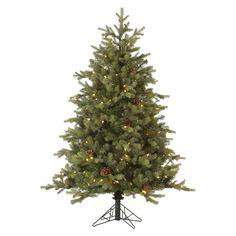 "9' x 77"" Pre-Lit Rocky Mountain Christmas Tree - Clear Lights"