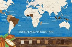 the map of cocoa bean production in the world Cacao Beans, Health Organizations, Earth Science, Ecuador, South America, Cocoa, Caribbean, Asia, Mexico