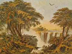 "Thomas Baines, ""Waterfall"""