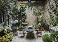 Rose Uniacke London designer indoor conservatory garden orchids