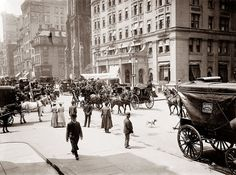 Old Images of the Bronx | Old Picture of the Day NYC 1905 | The Bronx is Up & the Battery's Down