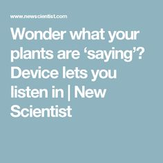Wonder what your plants are 'saying'? Device lets you listen in | New Scientist