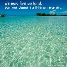 Beach life coastal living Caribbean. facebook.com/staysalty