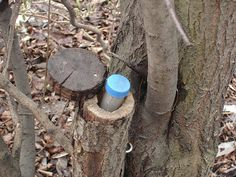 Great cache hide -- geocache folks have posted amazing hide strategies in this photo stream