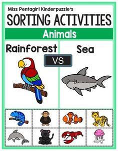Sorting Activities Posters and Worksheets Rainforest and Sea Animals Sorting Activities, Group Activities, Science Activities, Elementary Teacher, Elementary Education, Kindergarten Science, Preschool, Rainforest Activities, Primary Maths
