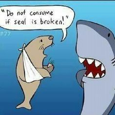 Okay, you've got to admit you giggled. And that seal is darn cute!!