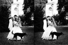 Funny Wedding Photos Best Of, Funny Wedding Pictures – 32 Pics Wedding Proposals, Wedding Humor, Funny Wedding Photos, Wedding Pictures, Le Chihuahua, Cool Pictures, Funny Pictures, Dump A Day, Outside Wedding