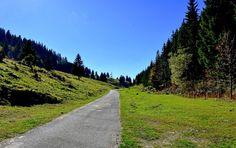 https://flic.kr/p/CFqGe5   Route de montagne  