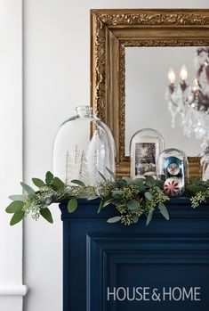 A collection of bottlebrush trees take on a snow globe-like quality when displayed under bell jars.   Photographer: Donna Griffith   Designer: Stacey Smithers