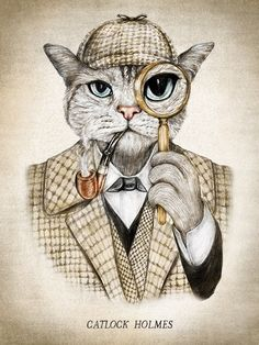 """We call Dexie """"Catlock Holmes"""" because he can find his catnip mouse no matter where it hides.  ~~  Houston Foodlovers"""