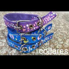 9b7ac69077b7 Collares Platos personalizados Vinil decorativo para pared Placas de identificación  Placas doble Collares Platos personalizados Vinil