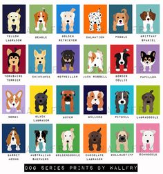 9834ff655dff Personalized children art print. Baby boy nursery art. Baby nursery wall  art. Kids wall art. Boy name art. Dog print by WallFry