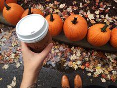 Image via We Heart It #autumn #fall #latte #pumpkin #spice #starbucks