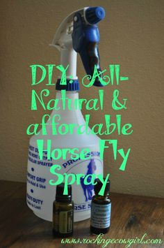 DIY Horse Fly Spray www.rockingecowgirl.com