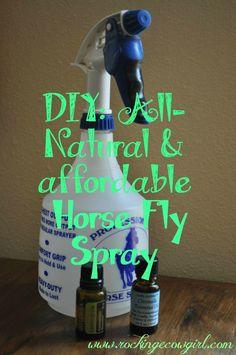 DIY Horse Fly Spray www.rockingecowgirl.com